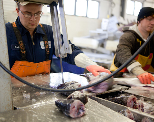 Portland Fish Exchange